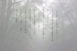 kinoco.木と鉄interior 金城ふ頭 ショップ再開のお知らせ|大地の鼓動を感じる空間kinoco.(キノコ)